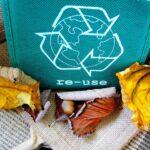 Come riciclare nel tuo ufficio: una guida step by step per non sbagliare
