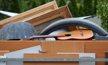 Puoi mettere la legna nel cassonetto della spazzatura sotto casa?